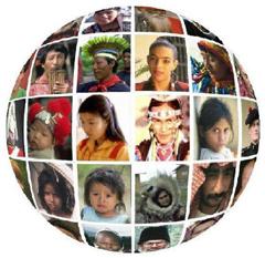 Языковые семьи и группы